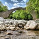 pyli-bridge